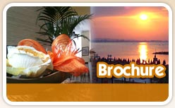 Download brochure Hotel
